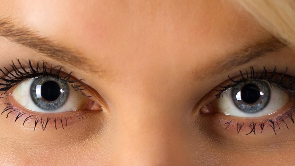 Protecting our Eyesight, our most Precious Sense
